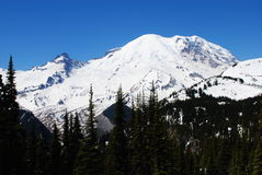 Mt. Rainier Royalty Free Stock Photography