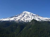 Mt Rainier Stock Photos