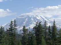 Mt. Rainier Stock Image