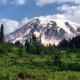 Mt rainier fotografia stock