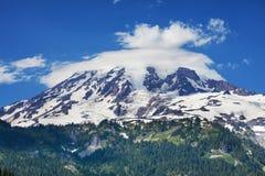 Mt.Rainier Stock Photos