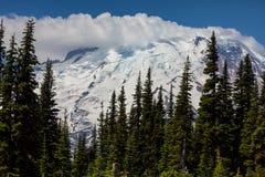 Mt.Rainier Stock Images