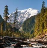 Mt.Rainier Royalty Free Stock Images