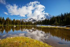 Mt.Rainier Royalty Free Stock Photos
