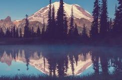 Mt rainier royaltyfri foto