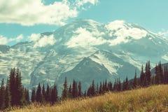 Mt rainier arkivfoto