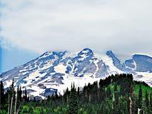 Mt Rainier Stock Photo