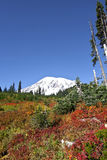 Mt. Rainier colors. Royalty Free Stock Images