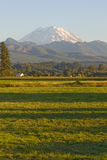 Mt Rainier Farmhouse and Field Royalty Free Stock Photo
