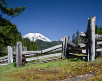 Mt Rainier Fenced In Photographie stock libre de droits