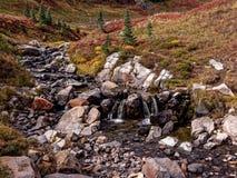 Mt Rainier Flowing Stream fotografía de archivo