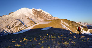 Dawn Mt. Rainier Hiker Moves Along Trail Sunrise Stock Photos