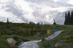 Mt Rainier hiking rainy day Stock Photography