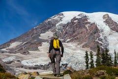 Mt.Rainier Stock Photography
