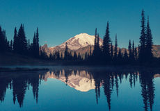 Mt.Rainier Stock Photography
