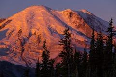 Mt.Rainier Royalty Free Stock Photo