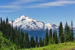 Mt.Rainier Stock Image
