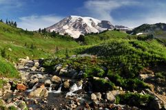 Mt. Rainier and myrtle falls Royalty Free Stock Photography