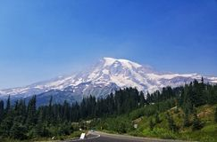 Mt Rainier National Park fotos de stock