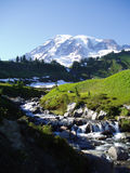 Mt Rainier National Park Royalty Free Stock Photos