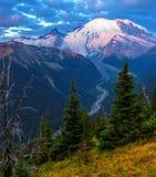 Mt Rainier National Park Photo stock