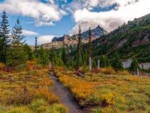 Mt Rainier National Park Changing Colors fotografía de archivo libre de regalías