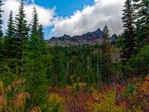 Mt Rainier National Park Changing Colors imagen de archivo