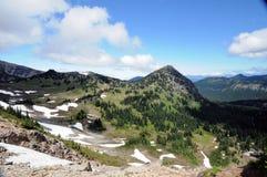 Mt. Rainier National Park Royalty Free Stock Photography