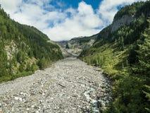 Mt Rainier National Park Valley fotos de archivo