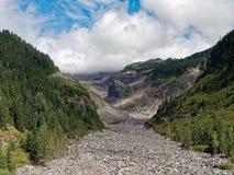 Mt Rainier National Park Valley imágenes de archivo libres de regalías
