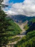 Mt Rainier National Park Valley foto de archivo