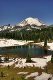 Mt Rainier over Tipsoo lake Stock Photo