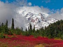 Mt Rainier At Paradise Location imágenes de archivo libres de regalías
