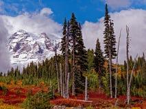 Mt Rainier At Paradise Location imagenes de archivo