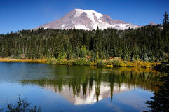 Mt Rainier with reflection Stock Photo