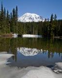 MT Rainier Reflection in de Vroege Lente Stock Afbeelding