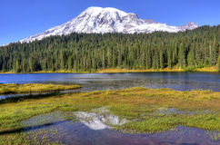 Mt. Rainier Reflection. Early autum morning at Reflection Lake, Mt. Rainiet Royalty Free Stock Photo