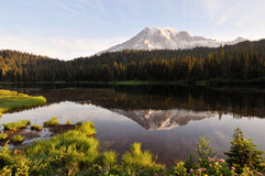 Mt. Rainier and Reflection Lake Royalty Free Stock Photo