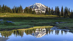 Mt. Rainier reflection in Spray Park Royalty Free Stock Image