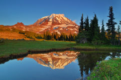 Mt. Rainier reflections Royalty Free Stock Photo