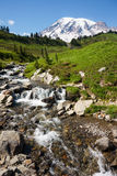 Mt Rainier. Stream with Mount Rainier in the distance Stock Photo