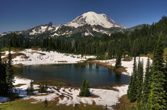 Mt Rainier and Tipsoo lake Royalty Free Stock Photo
