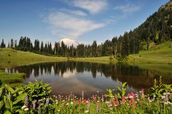 Mt. Rainier and Tipsoo Lake Royalty Free Stock Images