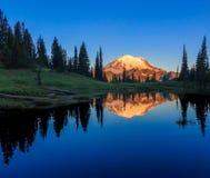 Mt. Rainier, WA Stock Images