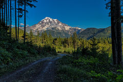 Mt. Rainier in Washington. This photo was taken of Mt. Rainier in Washington State Stock Image