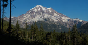 Mt. Rainier in Washington. This photo was taken of Mt. Rainier in Washington State Stock Images