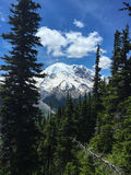 Mt. Rainier, Washington State. A view of the always breathtaking peak of Mt. Rainier. Snow covered in late June stock image