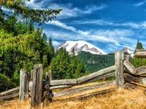 Mt Ranier Image libre de droits