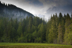 Mt. regenachtiger stock foto