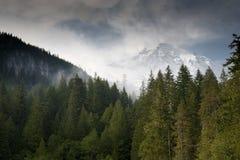 Mt. regenachtiger stock afbeelding